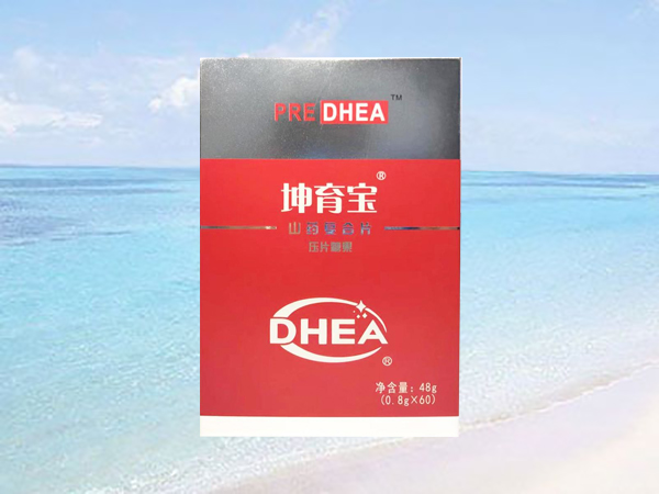 坤育宝DHEA山药复合片